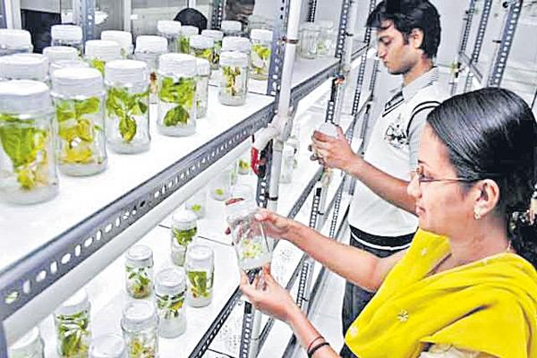 No funds to agriculture labs - Sakshi