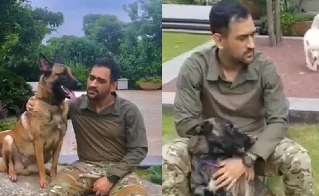 MS Dhoni Practice Session With His Dogs - Sakshi