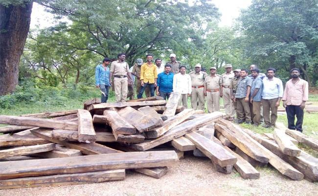 Wood Smuggling Arrested In Adilabad - Sakshi