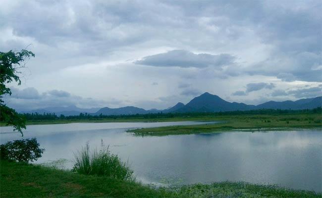 Beautiful Nature In Parvathipuram - Sakshi