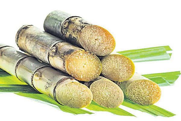 Health benefits of sugarcane - Sakshi