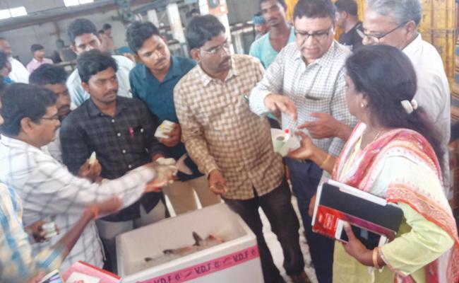 Task Force Rides On Fishes Packing West Godavari - Sakshi