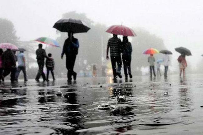 A 'normal' monsoon with droughts and floods? - Sakshi