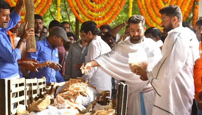 Nandamuri Harikrishna Funerals Completed - Sakshi