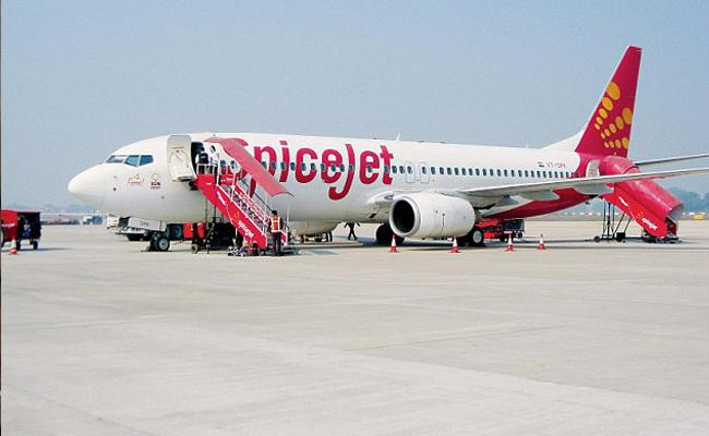 Harassment to The Air Hostess In Spicejet Airlines - Sakshi