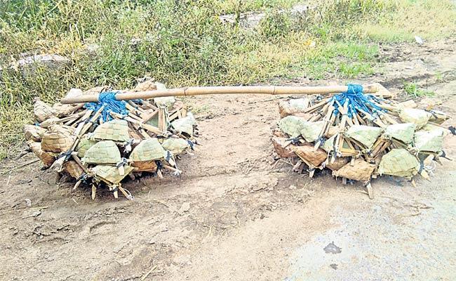 Rat Catchers In Medak  - Sakshi