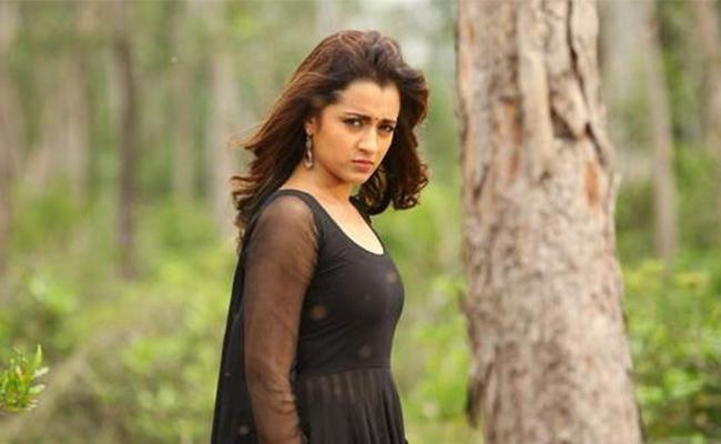Trisha Disappointed With Horror Movies - Sakshi