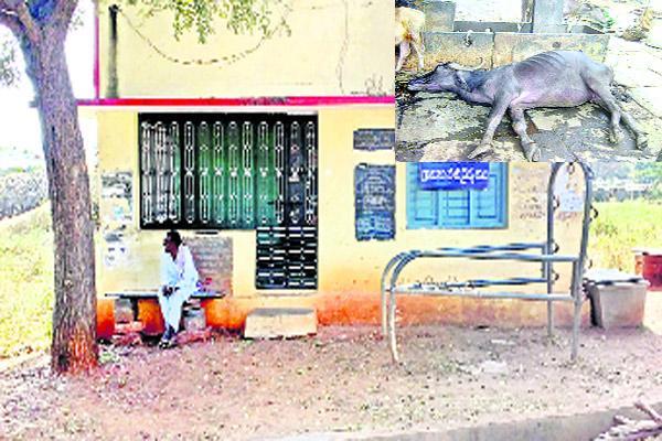Livelihoods Mission Not Implement In YSR Kadapa - Sakshi