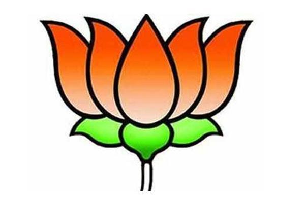 BJP focus on institutional strengthening - Sakshi