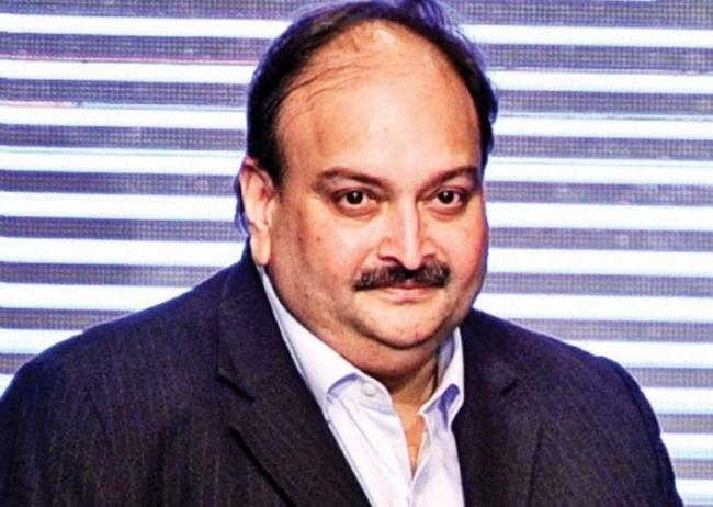 India requests Antigua and Barbuda govt to not allow Mehul Choksi - Sakshi