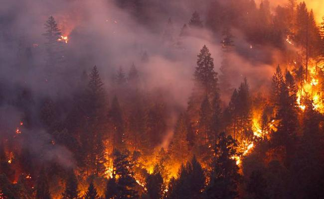 California fire is now largest in state history - Sakshi