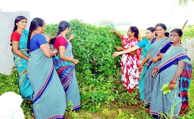 Nutrition Food Shortage In Anganwadi Centres YSR Kadapa - Sakshi