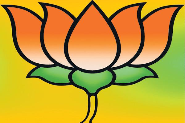 Bjp plans to alliance with tjs - Sakshi