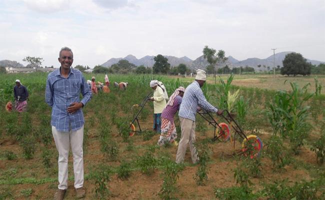Ideal farmer Prasad Special Story - Sakshi