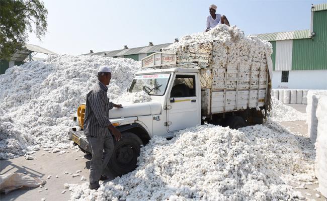 CCI Purchaseof  Cotton in Adilabad - Sakshi