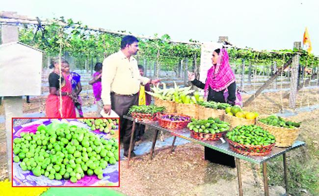 Prakasam Products Exports To europe - Sakshi