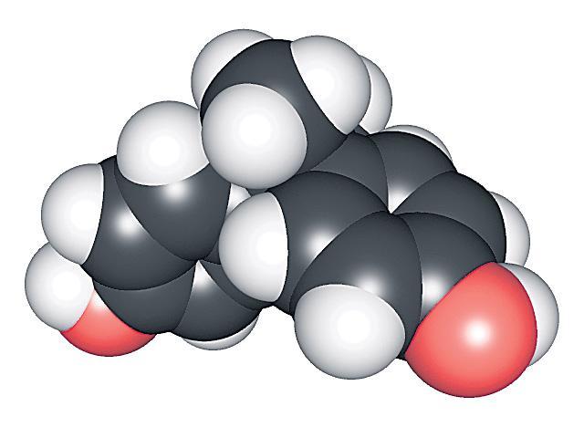 Diabetes with BPA emulsion? - Sakshi