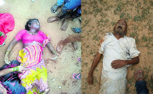 Two Mans Died In  Mahabubnagar - Sakshi