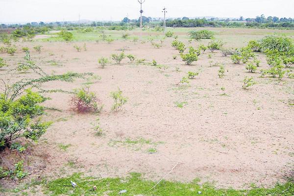 Government land regulation Free up to 125 yards - Sakshi