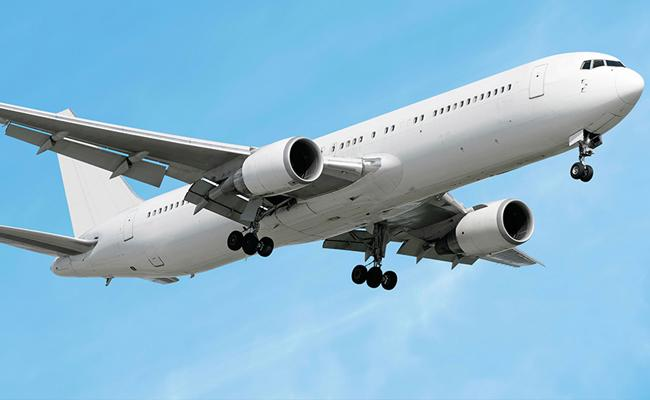 11 Months Old Dies After Developing Breathing Problem On Flight - Sakshi
