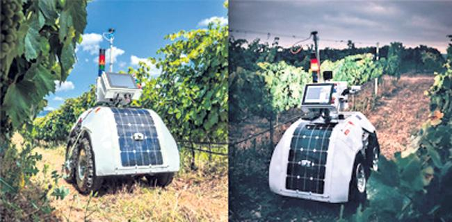 Robot has come to agriculture - Sakshi