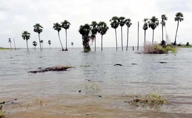 pulichintala Project Flood Water In Krishna River Guntur - Sakshi