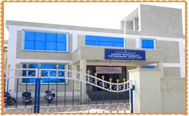 Veterinary Clinic In Nalgonda - Sakshi