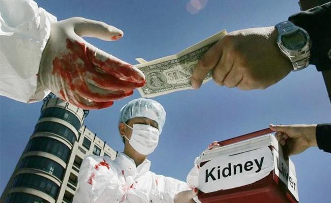 Organs Smuggling Scam In Tamil Nadu - Sakshi