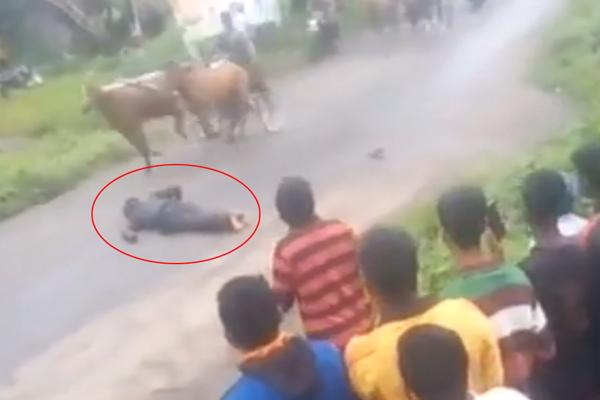 Man dies in Horse Cart Racing in Hubli - Sakshi