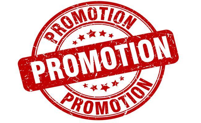 Panchayati Raj Employees To Promotions Adilabad - Sakshi