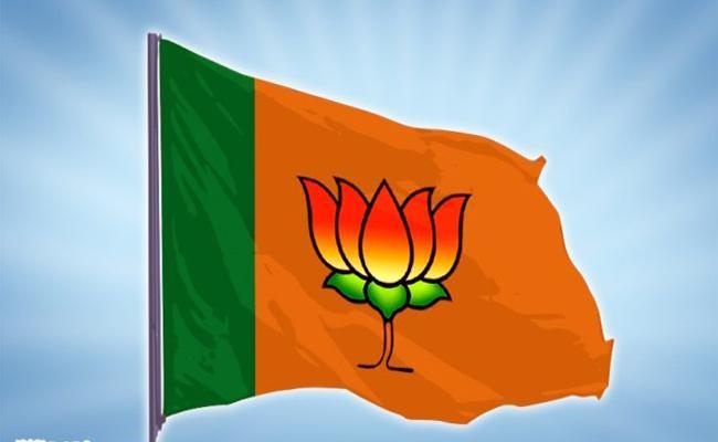 BJP Leader Kishan Reddy Talk To Early Election Mahabubnagar - Sakshi
