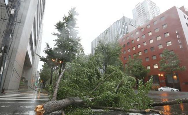 Kansai flights cancelled as Typhoon Jebi hits western Japan - Sakshi