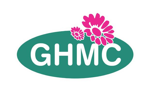 GHMC baldia workers Strike - Sakshi