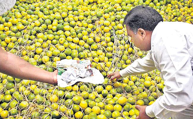China Powder And Chemicals Use In Fruits Market Hyderabad - Sakshi