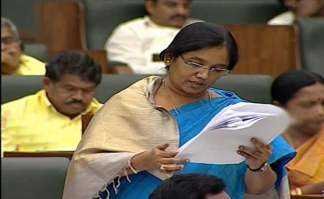 Minister Paritala Suneetha Has Given Answers Regarding Dwakra Loans  - Sakshi