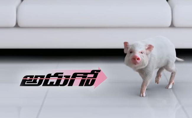 Ravibabu Adhugo Movie Teaser - Sakshi