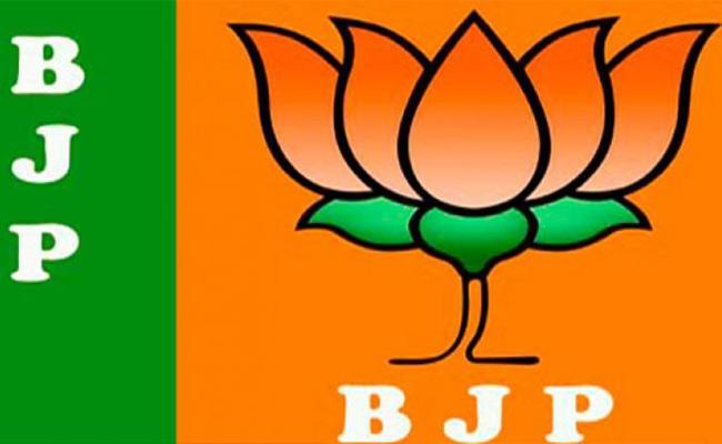 BJP Spokesperson Gayathri Slams Chandrababu In Vijayawada - Sakshi