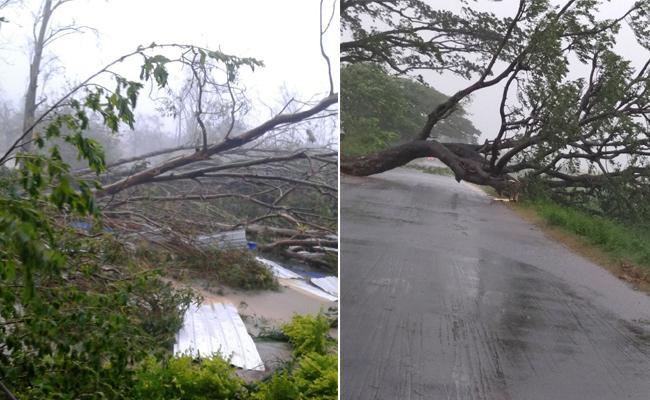 Red Alert In Srikakulam Due To Cyclone Titli - Sakshi