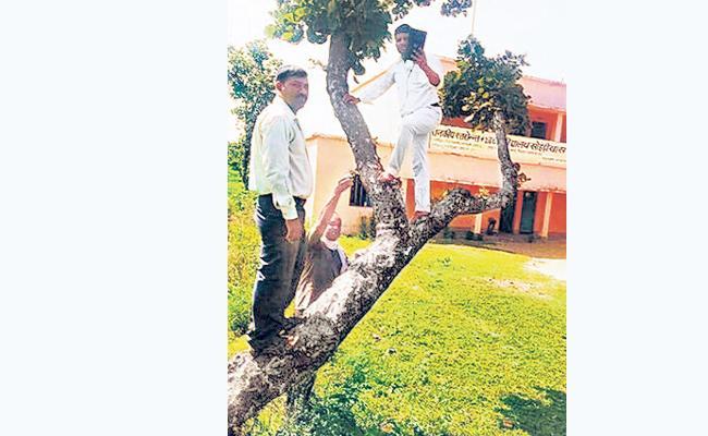 Jharkhand Teachers Climb Trees For Attendance - Sakshi
