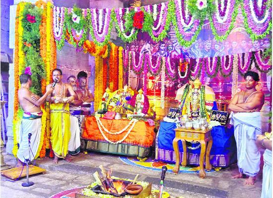 Tirumala srinivasa kalyanam special - Sakshi