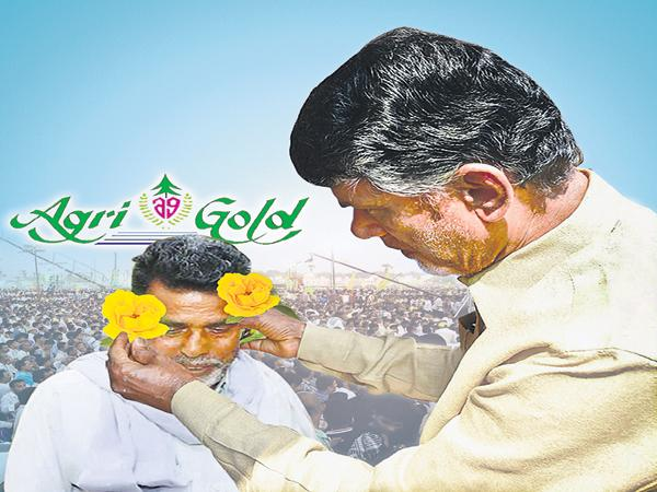 Chandrababu Back Step on legal proceedings about Agrigold Issue - Sakshi