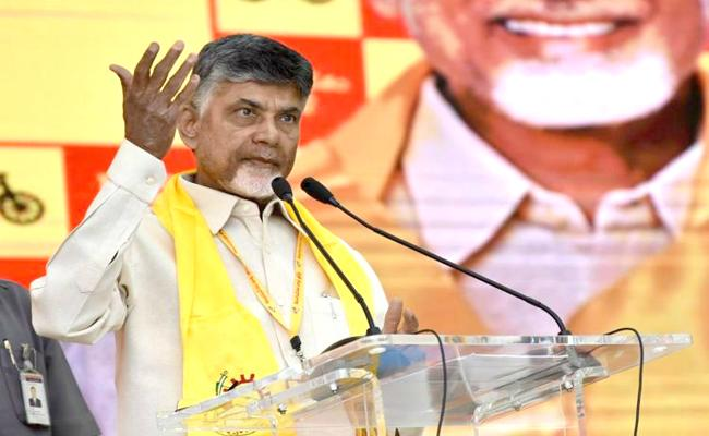 TDP Public meeting in Anantapur - Sakshi