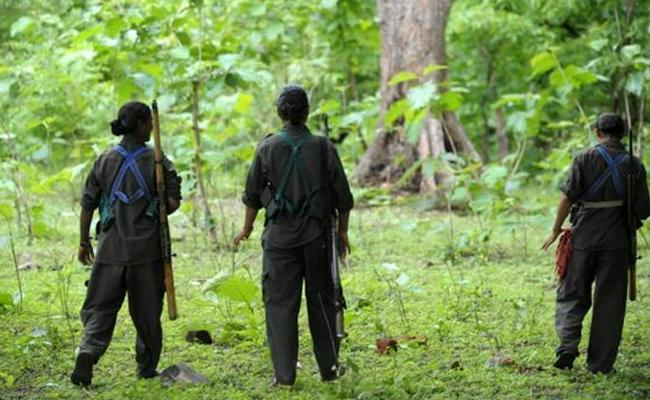 Five Maoists Killed In Encounter In odisha - Sakshi