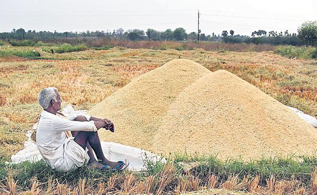 Devinder Sharma Article On Farmers Problems India - Sakshi