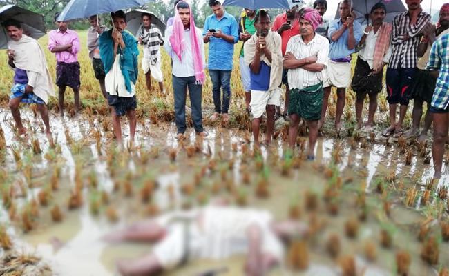 Cyclone Phethai Causes For Farmer Death In Srikakulam - Sakshi