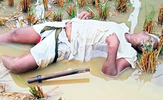 Farmers Died Due to Cyclone Phethai Shock - Sakshi