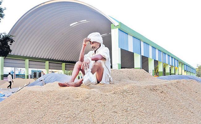 Devinder Sharma Article Written On Indian Agriculture - Sakshi