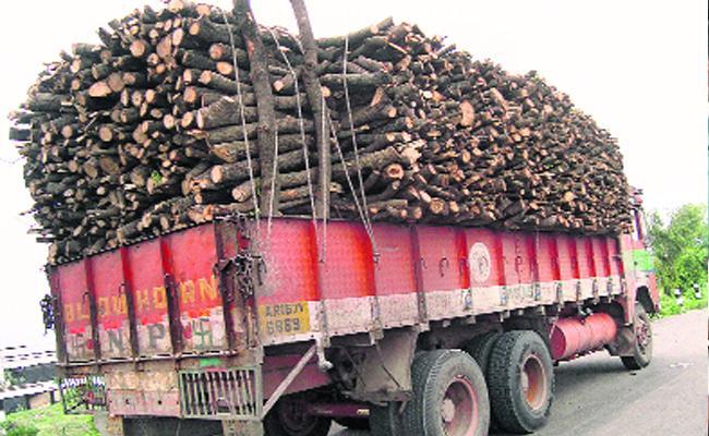 Telangana Forest Department Negligence - Sakshi