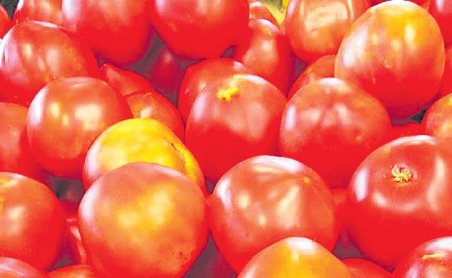 The Tomato price upwards - Sakshi