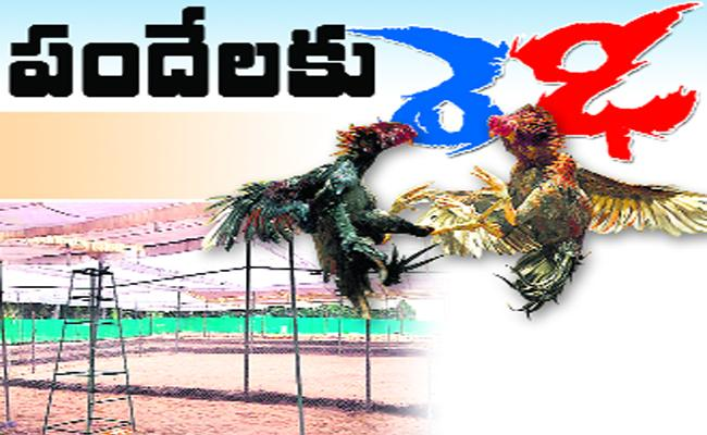 TDP Leaders participate Hen Fights in East Godavari - Sakshi